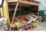 В Санкт-Петербурге ужесточена ответственность за незаконную торговлю