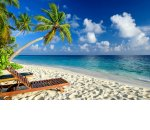 Как перенести отпуск по желанию сотрудника