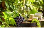 В России готовят закон о виноделии