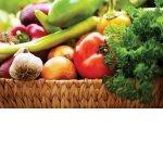 Первые национальные стандарты «зелёной» продукции утверждены в России
