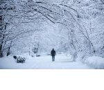 Задержки доставки и другие неприятности для бизнеса, когда наступают морозы и выпадает снег