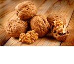 Переработка грецкого ореха как бизнес