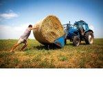 Путин поручил смягчить налоговую нагрузку на сельхозпроизводителей