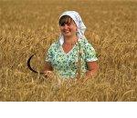 В ТК РФ закрепят гарантии для работающих на селе женщин