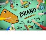 Попасть в тренд. Рейтинг брендов-2019
