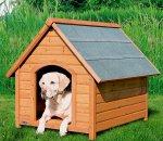 Бизнес-идея: изготовление домиков для собак