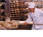 Основные тренды хлебопекарного рынка