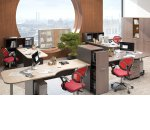 Прибрать рабочий стол и наслаждаться условиями труда: как продуктивно и без стресса использовать летнее время в офисе
