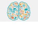 Звук, текстура, аромат, цвет, свет – 5 главных элементов нейромаркетинга в ритейле