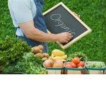 В России узаконят использование знака органической продукции
