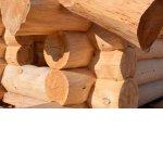 Строительство из рубленого бревна: тонкости бизнеса