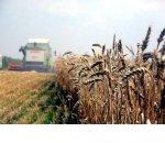 Бюджет госпрограммы развития сельского хозяйства увеличен в четыре раза