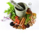 Прием и закупка лекарственных трав как бизнес