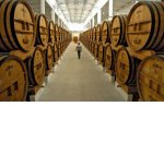 СМИ: До 80% импортеров вина могут уйти с рынка из-за документа Минфина