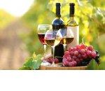 Минсельхоз начал запрашивать у ритейлеров данные о доле грузинского вина в ассортименте