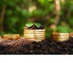 Утверждена новая форма декларации по земельному налогу