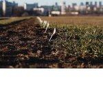 У организаций предлагают отбирать неиспользуемые земли
