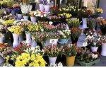 Как я открыла цветочный магазин