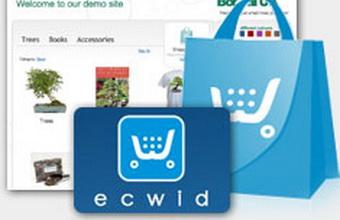 Стартап Ecwid привлек инвестиции фонда Runa Capital