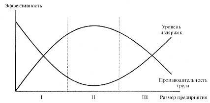 Рисунок 1. Изменение эффективности предприятия в зависимости от его размера (I-III -- различные фазы деятельности предприятия)