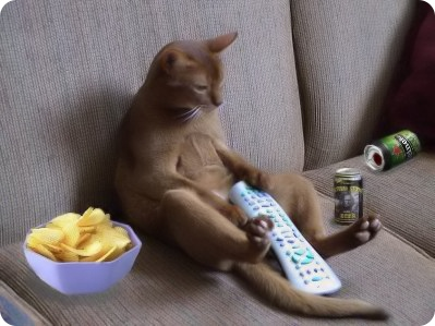2-couch-potatoe.jpg