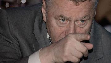 России нужно поколение лавочников - Жириновский