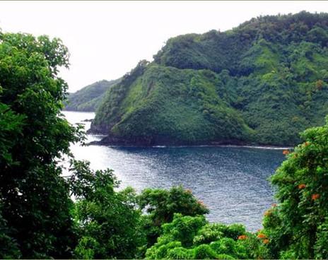 CEO Oracle купил себе гавайский остров