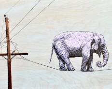 Как продать слона... если тебя этому не учили