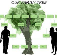 genealogy-800x800.jpg