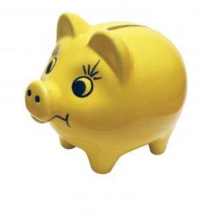 yellow_piggybank_piggy_238313_l.jpg
