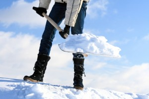 Со снегом борются не только ЖЭКи но и обычные граждане, имеющие свои частные дома, поэтому потенциал для бизнеса существенный, но кратковременный и определяется продолжительностью зимнего периода