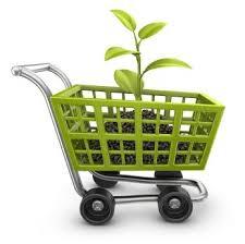 Зеленый магазин или как заработать на экологии